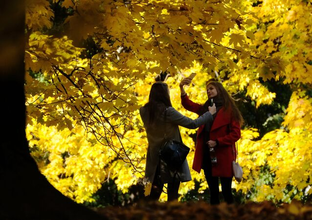 Vibrant Colors of Fall Spattered Across the Globe