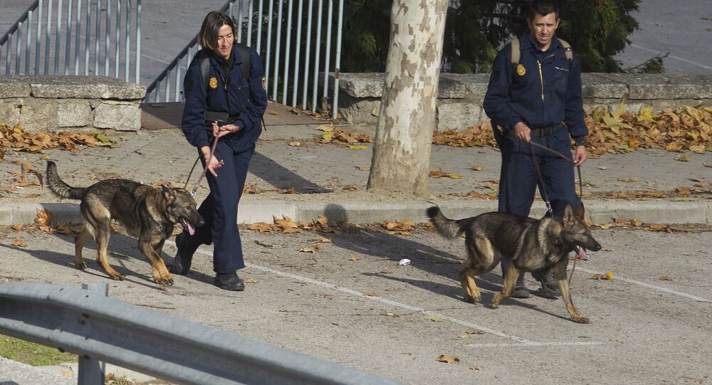 Two police officers exercise their dogs in Madrid (File)