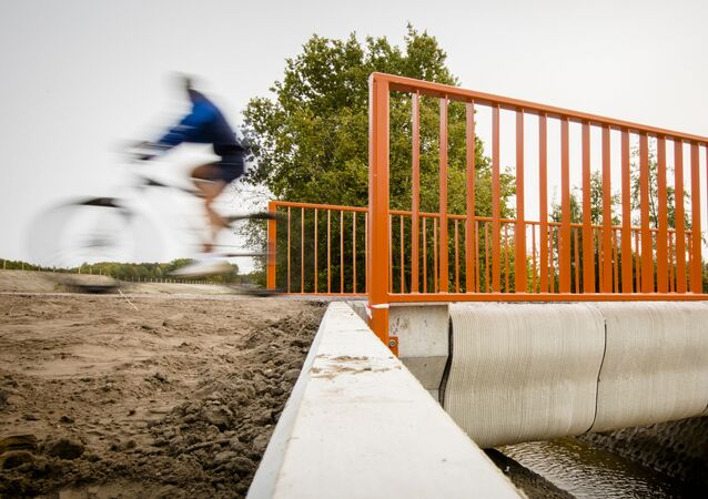 A Cyclist rides over what has been named as the world's first 3-D printed concrete bridge after its opening in Gemert, The Netherlands on October 17, 2017