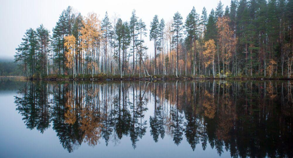 Lake Tolvayarvi in Suoyarvsky District of the Republic of Karelia