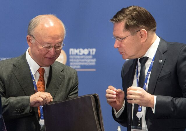 Alexei Likhachyov, right, General Director of the Rosatom State Corporation, and Yukiya Amano, Director General of the International Atomic Energy Agency, during the panel session, The Role of Nuclear in the Green Energy Mix, held as part of the 2017 St. Petersburg International Economic Forum