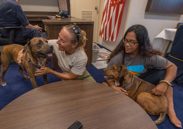 American mariners Jennifer Appel, left, and Tasha Fuiava, both from Honolulu, answer questions during a media call with their dogs Zeus, left, and Valentine, in the captain's cabin of the amphibious dock landing ship USS Ashland (LSD 48)