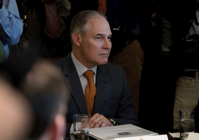 Environmental Protection Agency Administrator Scott Pruitt attends a Cabinet meeting with President Donald Trump, Monday, June 12, 2017, in the Cabinet Room of the White House in Washington.