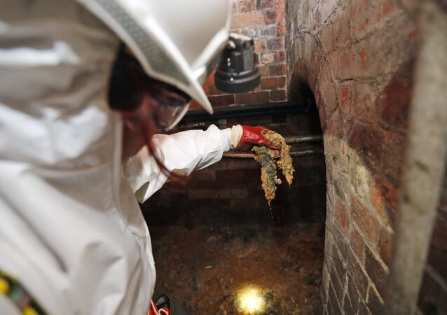 Thames Water field operation manager Natalie Stearn holds a piece of the Fatberg in an 1852-built sewer at Westminster in London, Monday, Sept. 25, 2017