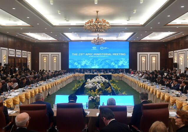 General view shows ministers as they attend the opening of the APEC Ministerial Meeting (AMM) ahead of the Asia-Pacific Economic Cooperation (APEC) Summit leaders meetings in Danang, Vietnam, November 8, 2017