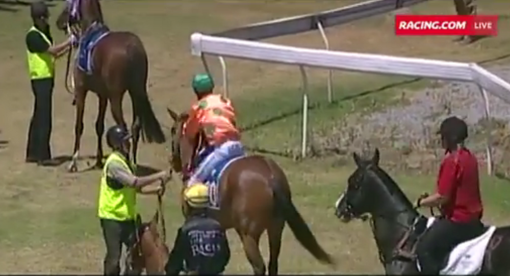 Dylan Caboche has been banned from racing for two weeks after punching his horse