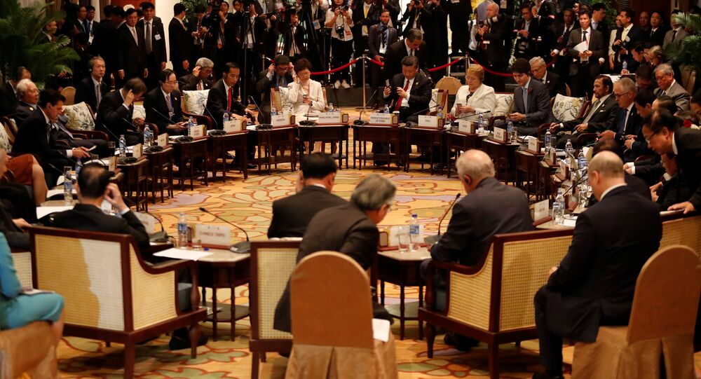 Leaders attend the APEC-ASEAN dialogue, on the sidelines of the APEC summit, in Danang, Vietnam November 10, 2017