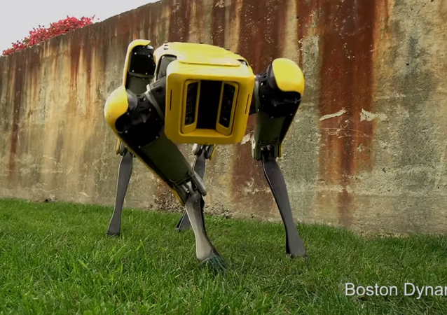Boston Dynamics reveals new dog robot named Spot Mini