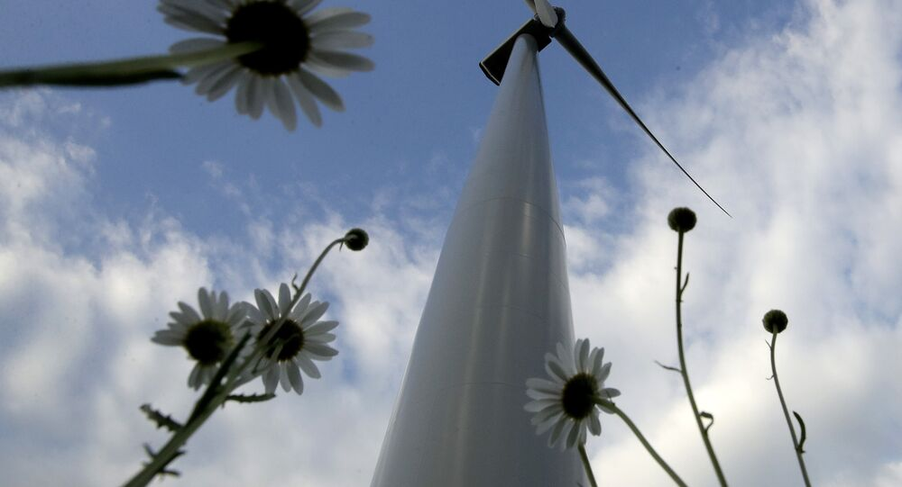 A wind turbine, part of the Lost Creek Wind Farm, stands above a field of daises Thursday, June 1, 2017, near King City, Mo. President Trump announced on Thursday that the United States would withdraw from the Paris climate accord, raising some doubt on the future of renewable sources of energy like wind and solar.