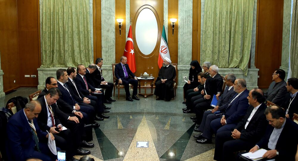 Turkey's President Tayyip Erdogan meets with Iran's President Hassan Rouhani in Sochi, Russia, November 22, 2017