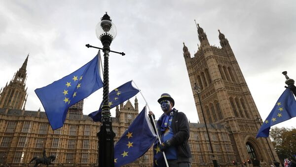 An anti-Brexit, pro European Union campaigner holds a EU flag, near Parliament in London, Wednesday, Nov. 22, 2017. Britain's Treasury chief has little room to maneuver Wednesday as he reveals his spending plans to a nation bracing for the shock of Brexit. - Sputnik International