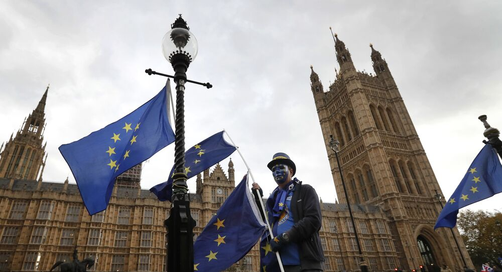 An anti-Brexit, pro European Union campaigner holds a EU flag, near Parliament in London, Wednesday, Nov. 22, 2017. Britain's Treasury chief has little room to maneuver Wednesday as he reveals his spending plans to a nation bracing for the shock of Brexit.