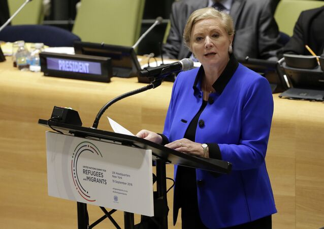 Ireland's Deputy Foreign Minister Frances Fitzgeral. (File)