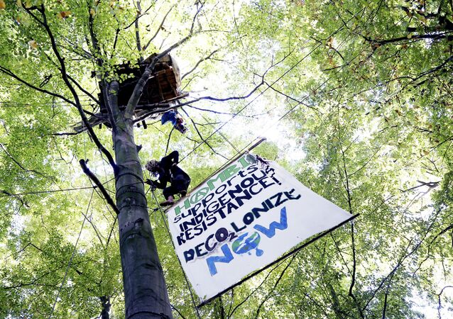 an activist climbs up a tree at the Hambach forest near Morschenich, Germany. Cologne's administrative court ruled Friday, Nov. 24, 2017 against a legal complaint brought by the environmental group BUND that wanted to halt the clearance of much of Hambach forest