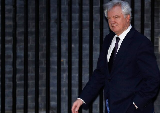 Britain's Secretary of State for Exiting the European Union David Davis arrives at 10 Downing Street, London, November 22, 2017.