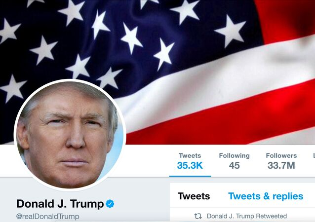 The masthead of U.S. President Donald Trump's @realDonaldTrump Twitter account is seen on July 11, 2017