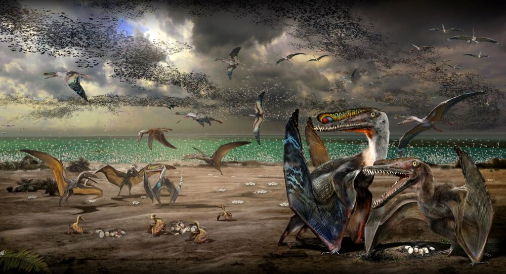 An artist's illustration shows individuals from the fish-eating pterosaur species Hamipterus tianshanensis, including adults, juvenile and eggs in this handout illustration obtained by Reuters November 30, 2017