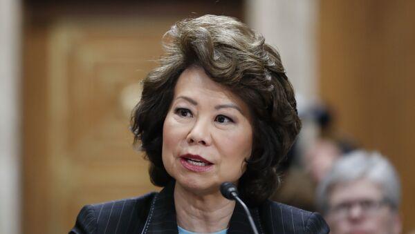 Transportation Secretary Elaine Chao testifies on Capitol Hill in Washington (File) - Sputnik International