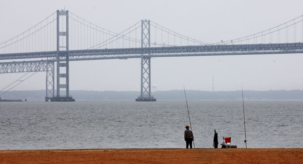A man looks out over the Chesapeake Bay, with the Bay Bridge in the background, at Sandy Point State Park in Annapolis, Md., on Wednesday, May 12, 2010.