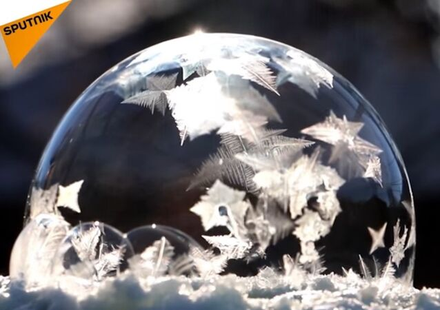Soap Bubble in the Frost