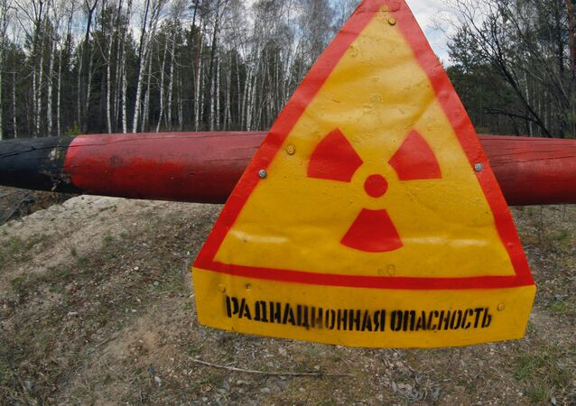 A danger sign in the Khoiniki District, Belarus, within a 30 kilometer restricted zone round the Chernobyl nuclear plant. File photo