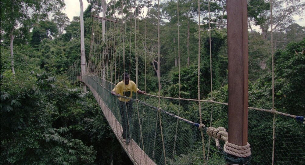 A footbridge over a river in the African country of Ghana