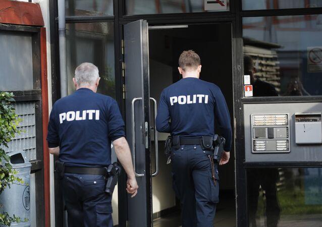 Police officers in Denmark. (File)