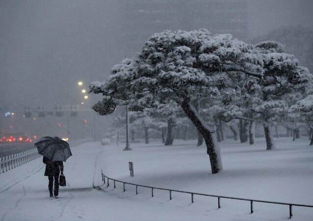 A man holding an umbrella makes his way in the heavy snow at the Imperial Palace in Tokyo