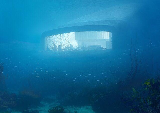 Under underwater restaurant