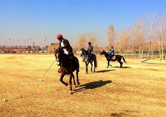 Chovgan, an Iranian version of modern sport polo
