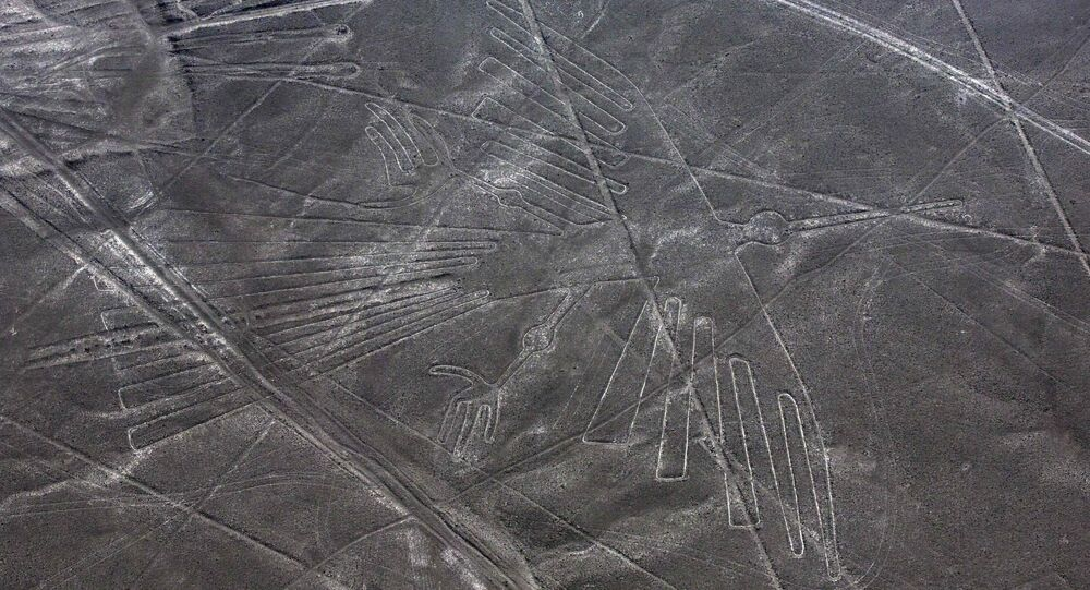 Year-old cat discovered in Peru's Nazca lines