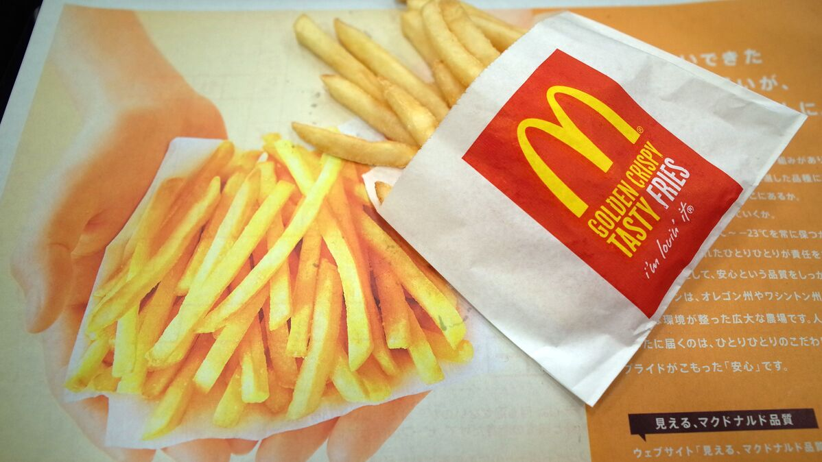 Salon Size Me Chemical In Mcdonald S French Fries Helps Grow Hair