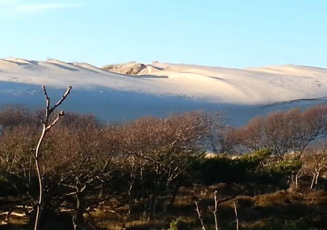 Sahara-like Beauty