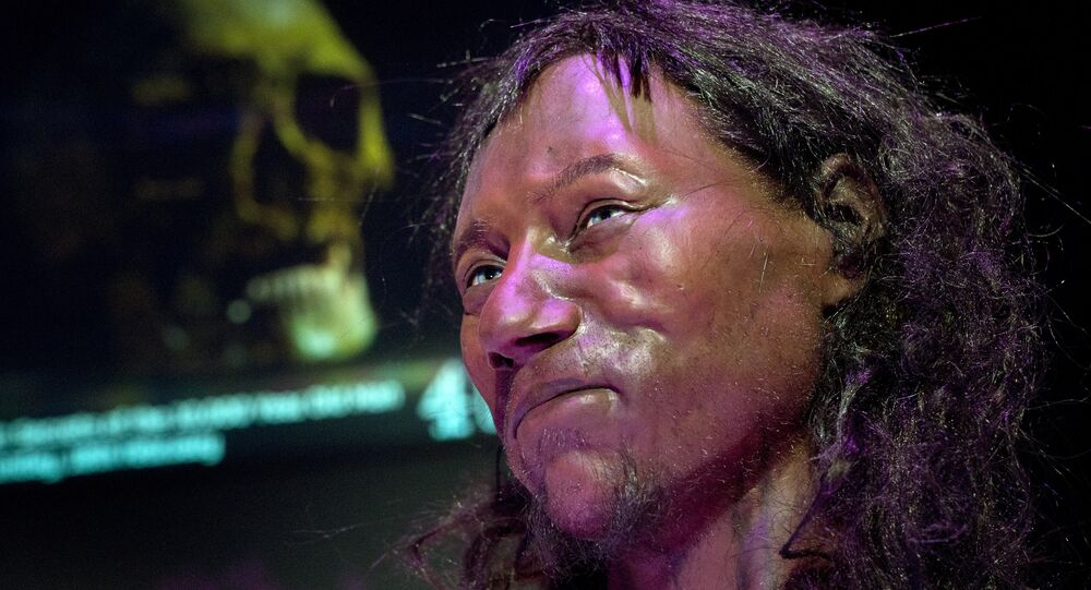 A full face reconstruction model made from the skull of a 10,000 year old man, known as 'Cheddar Man', Britain's oldest complete skeleton is pictured during a press preview at the National History Museum in London on February 6, 2018.