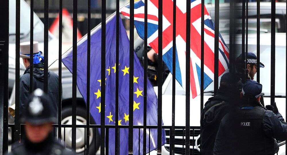 A demonstrator carries a Union Jack and a European Union flag as the EU's chief Brexit negotiator Michel Barnier visits Downing Street in London, Britain