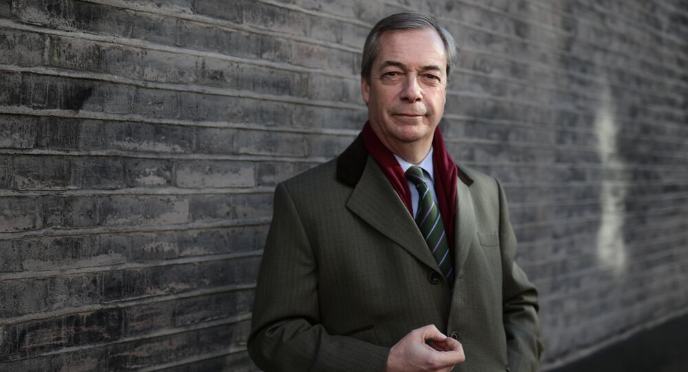 The former leader of Britain's UK Independence Party (UKIP), Nigel Farage (File)