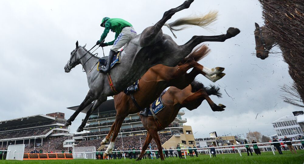 'Bristol de Mai ridden by jockey Daryl Jaccob (L) jumps a hurdle during the Gold Cup race on the final day of the Cheltenham Festival horse racing meeting at Cheltenham Racecourse in Gloucestershire, south-west England, on March 17, 2017