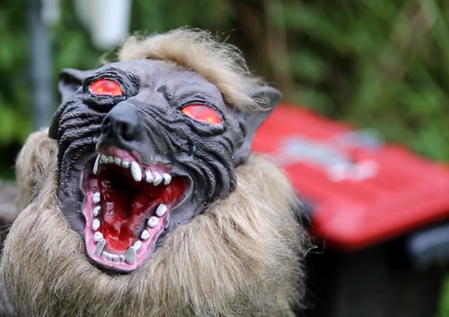 New 'Super Monster Wolf' robot gets enlisted to protect crops from wild boars in Japan