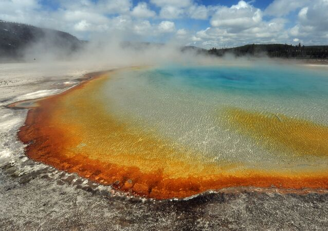 View of the 'Sunset Lake' hot spring with it's unique colors caused by brown, orange and yellow algae-like bacteria called Thermophiles, that thrive in the cooling water turning the vivid aqua-blues to a murkier greenish brown, in the Yellowstone National Park, Wyoming on June 1, 2011
