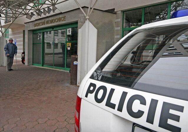 Czech Republic police. (File)