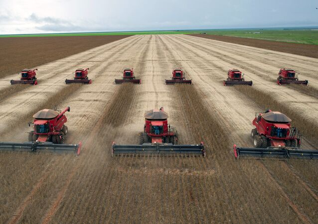 Combine harvesters crop soybeans. (File)