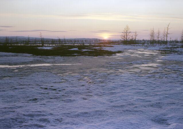 Tundra. Taymyr Peninsula. File photo