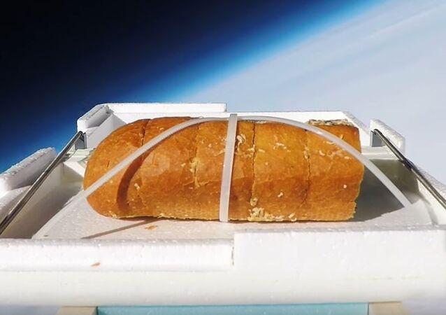We Sent Garlic Bread to the Edge of Space, Then Ate It