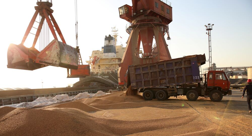 Workers transport imported soybeans at a port in Nantong, Jiangsu province, China April 9, 2018
