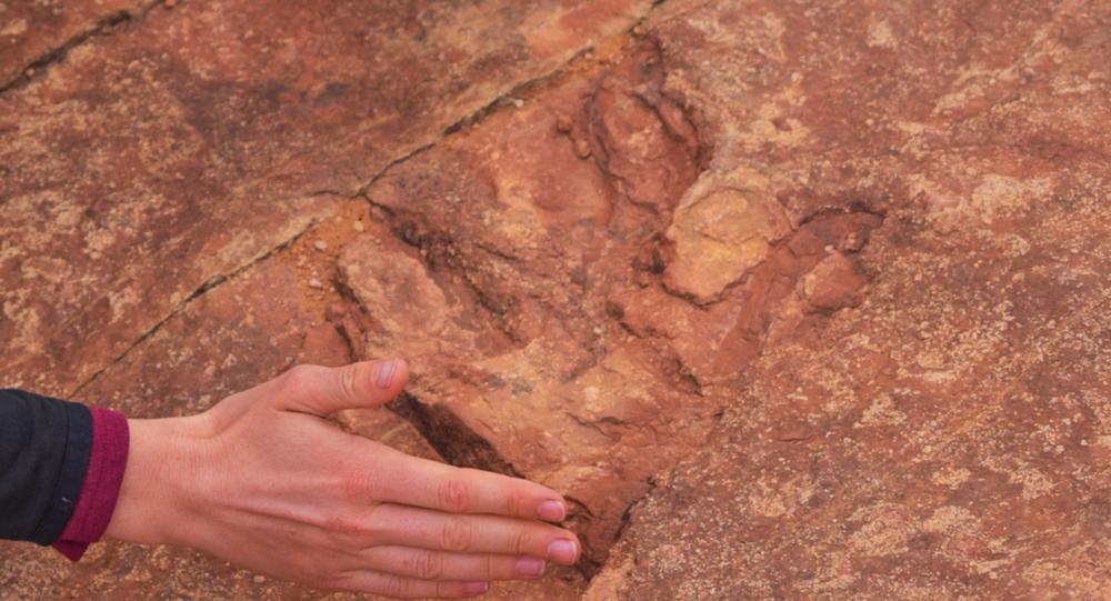 Dinosaur track located at Utah's Red Fleet State Park