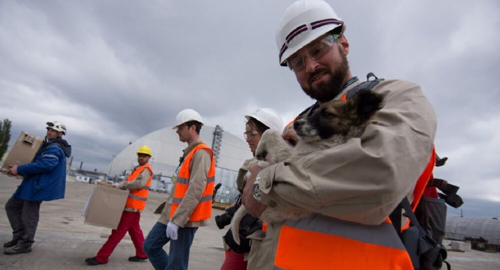 First 12 dogs brought out from New Safe Confinement site
