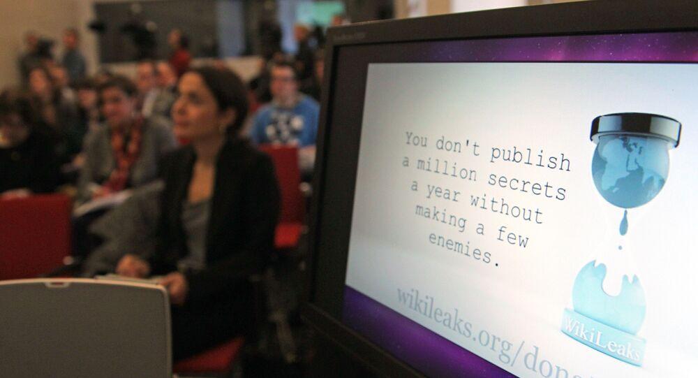 A computer screen shows a WikiLeaks logo (File)