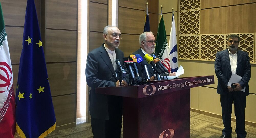 Iran's nuclear chief Ali Akbar Salehi speaks during a joint press conference with European Commissioner for Energy and Climate, Miguel Arias Canete, in Tehran, Iran, May 19, 2018