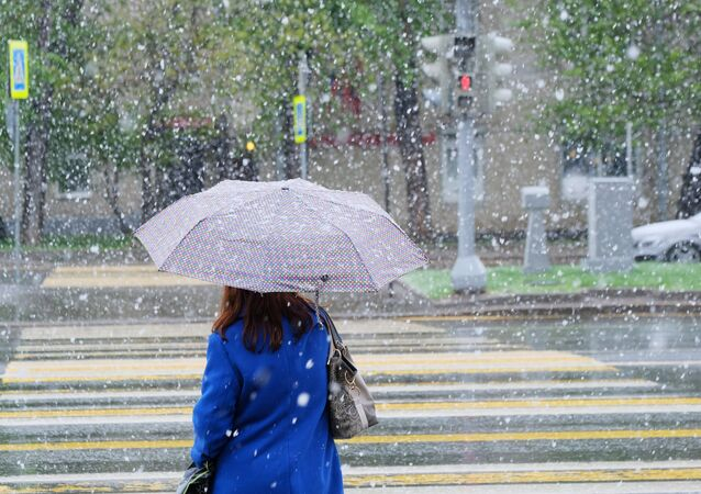 A woman walks in a Moscow street during a snowfall, file photo