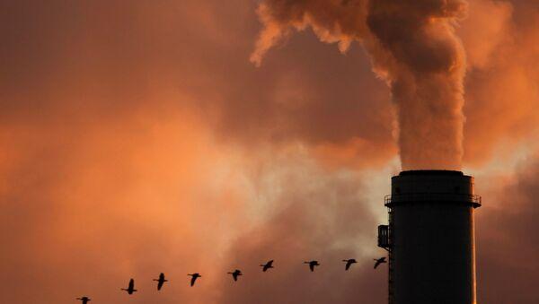 a flock of geese flying past a smokestack at the Jeffery Energy Center coal power plant near Emmitt, KS - Sputnik International